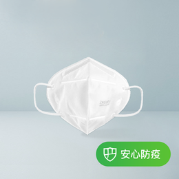 【中國直郵】網易嚴選 KN95專業防護口罩 5只裝