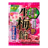 RIBON Plum Jam Filling Hard Candy 110g