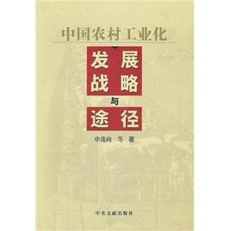 中国农村工业化发展战略与途径