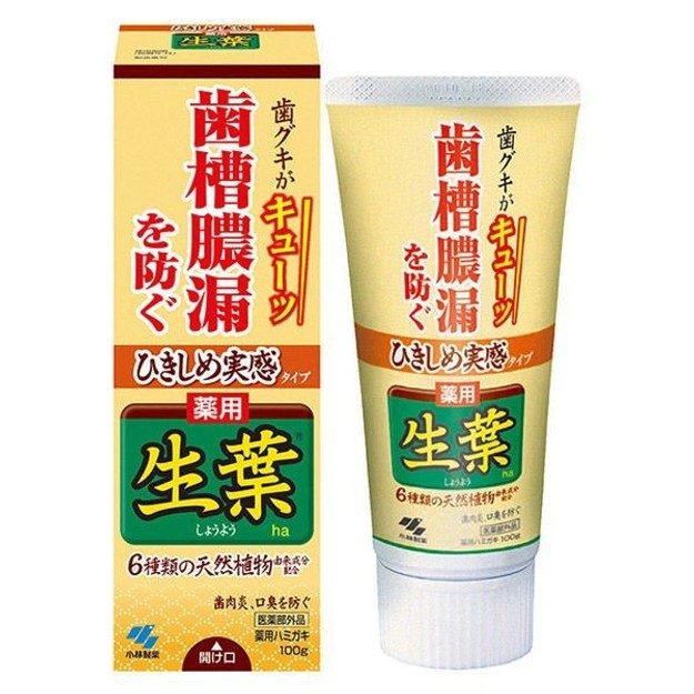 Product Detail - JAPAN KOBAYASHI Toothpaste Yellow 100g - image 0