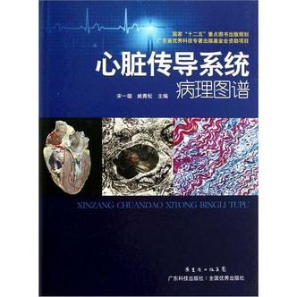心脏传导系统病理图谱