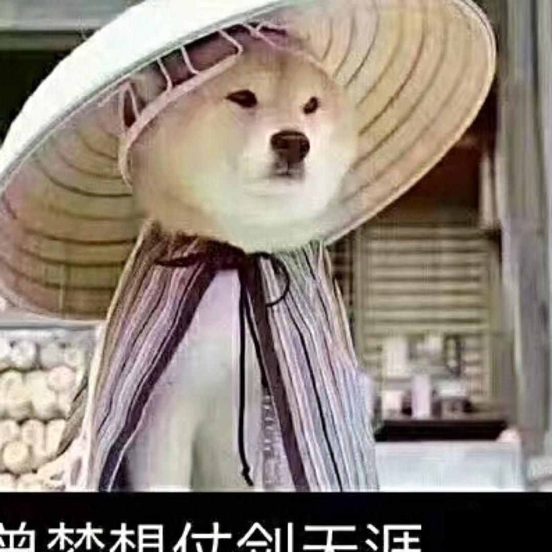 Jinxuan头像