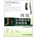 临床解剖学实物图谱丛书·四肢应用解剖学实物图谱
