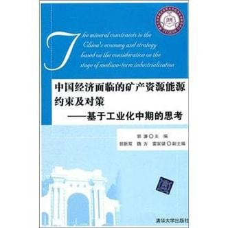 中国经济面临的矿产资源能源约束及对策:基于工业化中期的思考