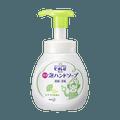 Japan Biore U Foam Hand Soap Pump 250ml #Citrus