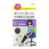 日本TRAIN女の欲望 清爽轻盈紧固冷却 分段式着压护腿袜 120D #02 黑色 1对入