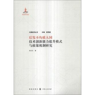 大国经济丛书:后发不均质大国技术创新能力提升模式与政策机制研究
