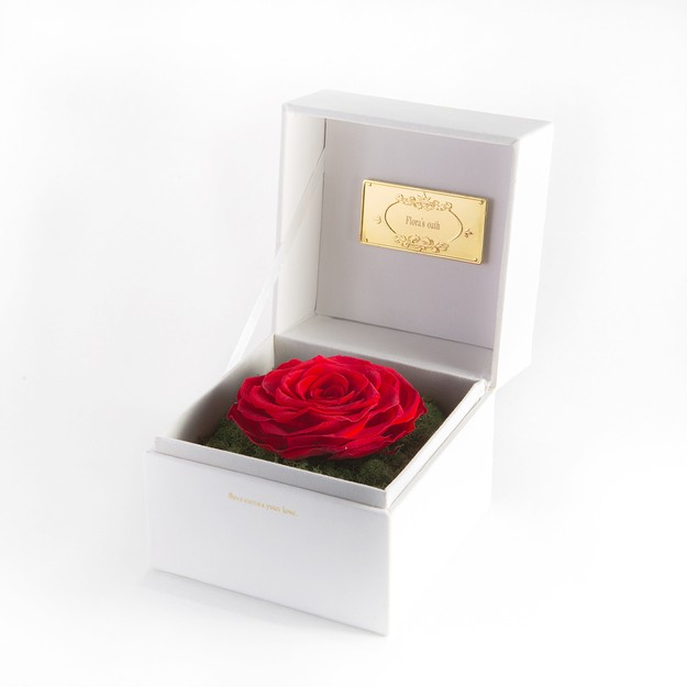 Product Detail - FLORA\'S OATH Eternal C.S. Infatuation 1 Red Rose in White Box - image 0
