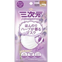 【日本直邮】日本KOWA 兴和制药三次元 防掉妆 淡淡香草香 口罩 5枚独立包装