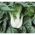 短白菜2磅