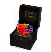 FLORA'S OATH Eternal C.S. Miracle 1 Red Rose in Black Box