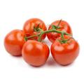 新鲜连藤番茄  2磅
