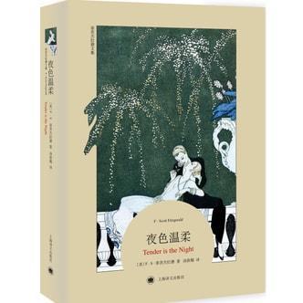 菲茨杰拉德文集:夜色温柔(平装本)