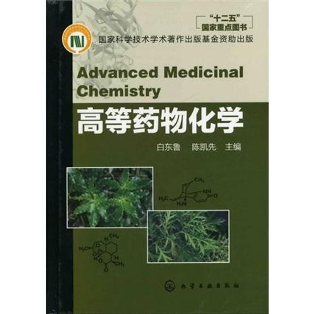 Product Detail - 高等药物化学 - image 0