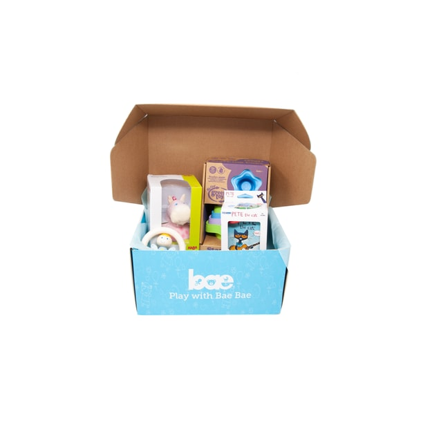 Product Detail - US Bae Bae Box 8 months baby toy box 4 pieces - image 0