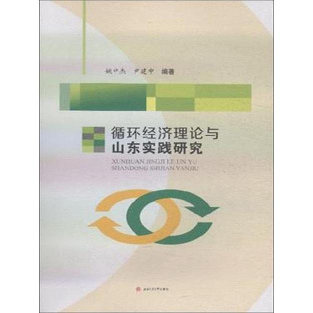 商品详情 - 循环经济理论与山东实践研究 - image  0