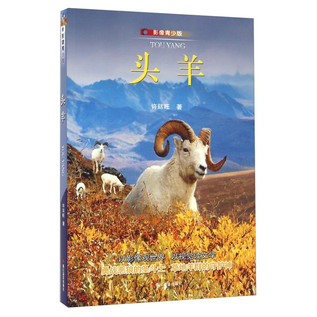 商品详情 - 头羊(影像青少版) - image  0