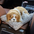 LORDUPHOLD Car Interior Decoration Dog Decor Car Ornament Plush Dogs Shake Head Simulation Sleeping Charlie Dog 1 pcs