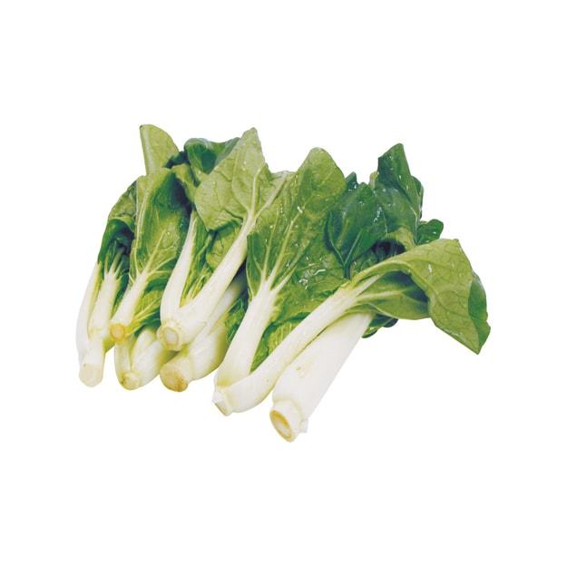 商品详情 - 白菜苗1.8-2.2磅 - image  0