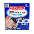 [日本直邮] 日本本土版KAO花王 蒸汽眼罩 新版男士专用 薄荷香 12片