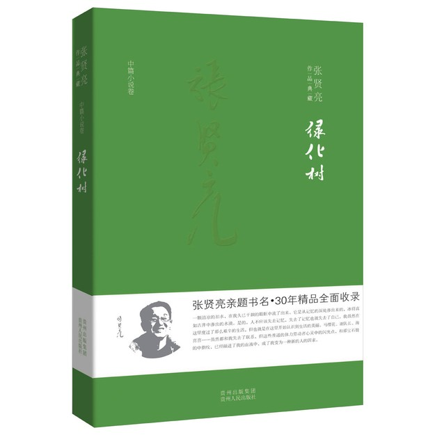 商品详情 - 张贤亮作品典藏·中篇小说卷:绿化树 - image  0