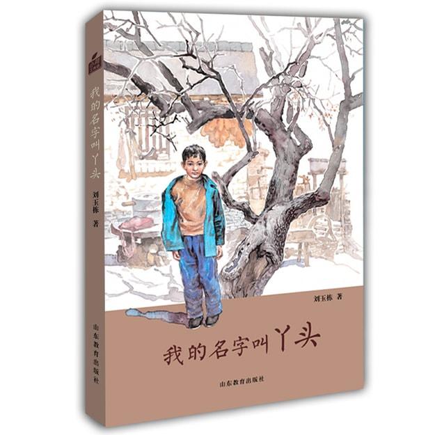 商品详情 - 刘玉栋长篇少年成长小说·小荷工作坊原创儿童文学:我的名字叫丫头 - image  0