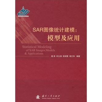 SAR图像统计建模:模型及应用