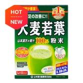 日本山本汉方 大麦若叶青汁粉末 22包入 66g