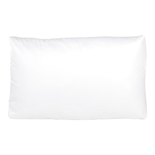 商品详情 - 苏宁极物 白鹅羽绒立体枕芯 助眠枕头 白色 - image  0