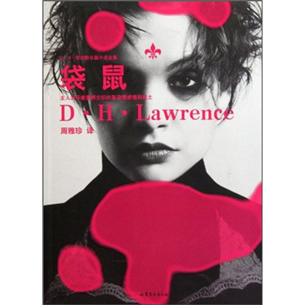 商品详情 - D·H·劳伦斯长篇小说全集:袋鼠 - image  0