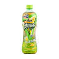 MASTER KONG Iced Green Tea 500ml