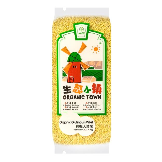 Product Detail - ORGANIC TOWN Organic Glutinous Millet 420g - image 0
