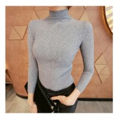 KOREA MAGZERO Mock Neck Stretchy Ribbed Knit Top Charcoal One Size(S-M) [Free Shipping]