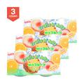 日本SHIRAKIKU赞岐屋 果肉果冻 综合味 400g*3盒装