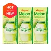 BINGGREA Melon Flavored Milk Drink 6 Packs