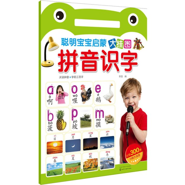 Product Detail - 聪明宝宝启蒙大挂图——拼音识字 - image 0