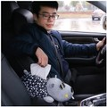 RAMBLE cartoon car armrest box creative plush paper towel pumping large ruffian dog without paper towel 1 piece