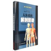 人体系统解剖图谱