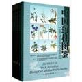 中国药材图鉴:中药材及混伪品鉴别(套装共4册)