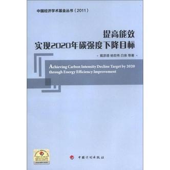 中国经济学术基金丛书·提高能效:实现2020年碳强度下降目标(2011)