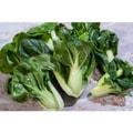 四季蔬果 奶油白菜苗 (1磅)