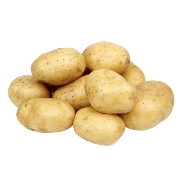 商品详情 - 白土豆1.2-1.3磅 - image  0