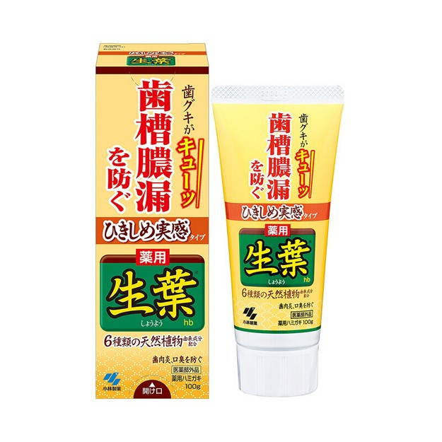 Product Detail - KOBAYASHI toothpaste (solve many type of tooth disease)100g - image 0