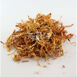 XLSEAFOOD Premium China Farmed dried cordycepssinensisf 454g 16oz