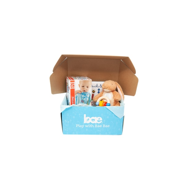 Product Detail - US Bae Bae Box 6 months baby toy box 4 pieces - image 0