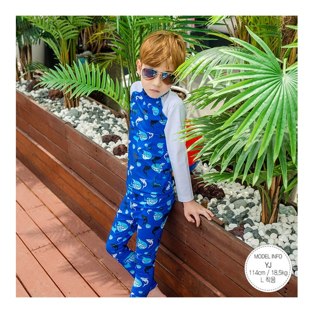 Product Detail - MODELAMI Kid Boy Shark Rash Guard+Swim Leggings  2 Pieces Set UPF 50+ #Blue L(6-7years) - image 0