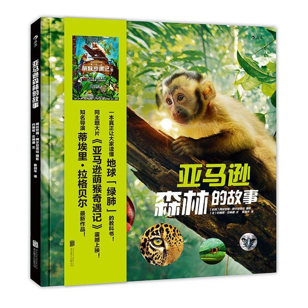 商品详情 - 亚马逊森林的故事 - image  0