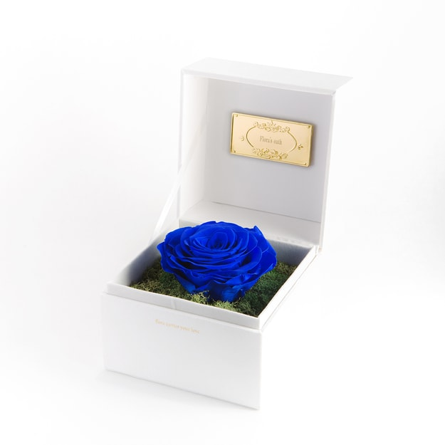Product Detail - FLORA\'S OATH Eternal C.S. Profound 1 Blue Rose in White Box - image 0