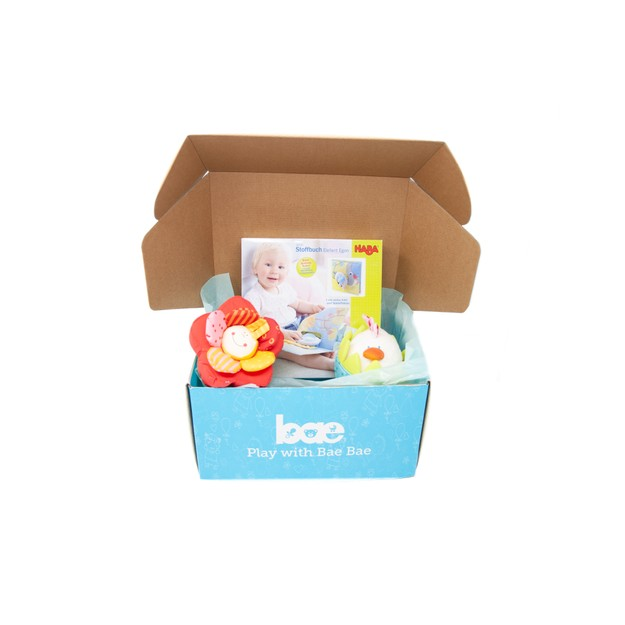 Product Detail - US Bae Bae Box 9 months baby toy box 3 pieces - image 0