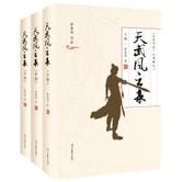 天武风云录(套装全3册)